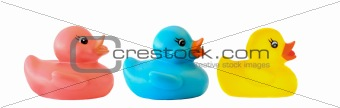 Three ducks toy of different colors