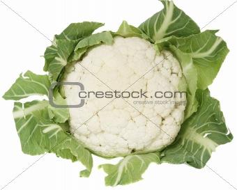 Single cauliflower