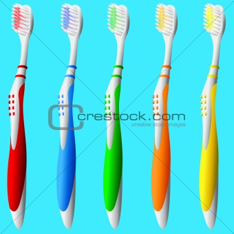 Toothbrushes in vector