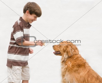 Boy Giving Dog a Reward