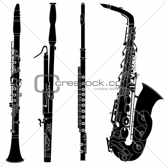 Woodwind musical instruments in vector