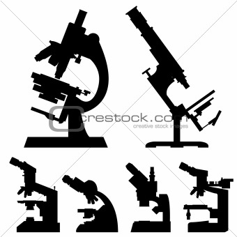 Image description laboratory and science microscopes in detailed