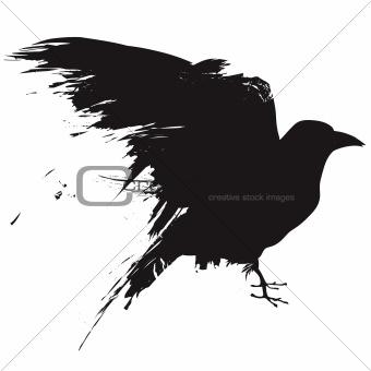 Grunge raven
