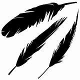 Grunge bird feathers