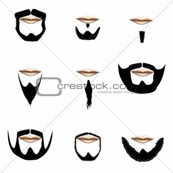 Beards in vector