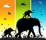 Family of elephants on nature walk