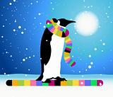 Penguin, winter in Arctic