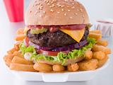 Cheese Burger In A Sesame Seed Bun With Fries