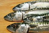 Mackerel heads