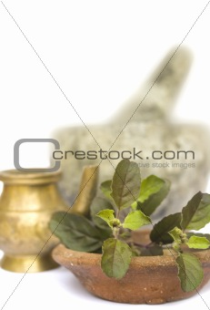 ayurveda natural health 1