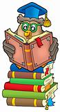 Reading owl teacher on books