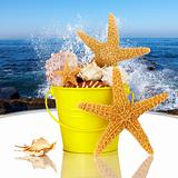 Day Spa Still-life Wtith Starfish And Sea Shells In Colorful Yel