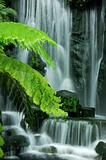 Garden waterfalls
