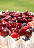 Meringue pavlova cake with berries