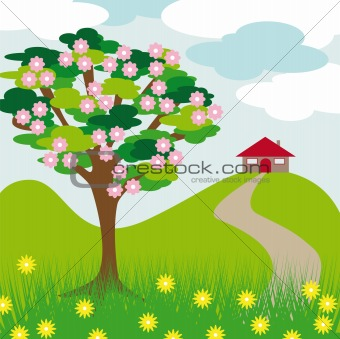 pink blossom tree hill and house