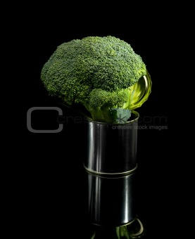 broccoli on a tin can