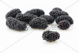 Blackberries closeup