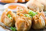 deep fried chinese dumpling