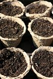 Recycled Seedling Pots