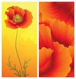 Spring greeting card with poppy