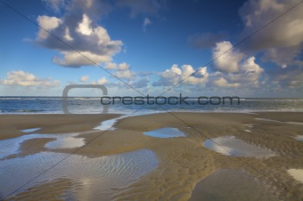 a beach at the sea in the Netherlands in summer with a blue sky