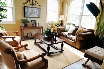 Modern stylish living room