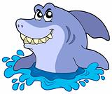 Cartoon shark in water