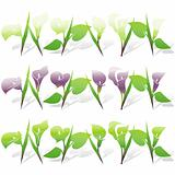 Calla Lily Icon Set