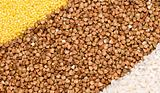 Millet, buckwheat, rice background