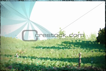 Abstract picture of grass and sky