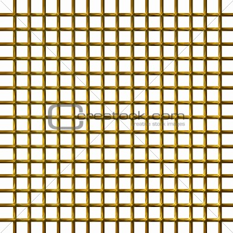 3D Golden Net