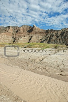 Cycles OF Life In The Badlands.