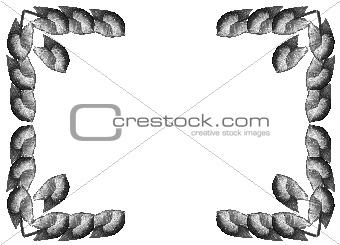Framework from leaves Syngonium