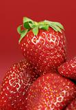 Strawberries on Red