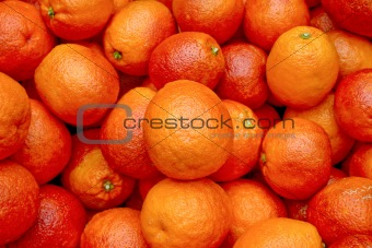 Bloody oranges 3