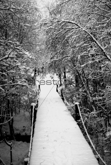 Bridge in the snow