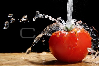 Tomato and Water