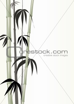 Green bamboo shoots on tranquil green background