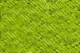 Grean leaf background