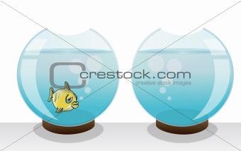 alone fish