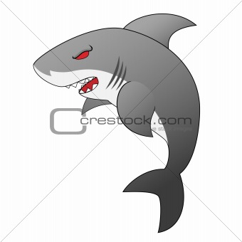 Angry Looking Cartoon Shark