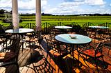 Patio overlooking vineyard