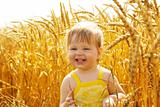 Kid in wheat