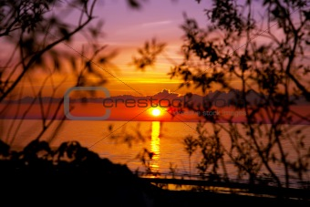 beautiful sunset on the beach with bushes