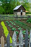farming garden with barn house