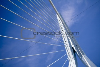 Erasmus Bridge. Details