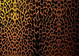 leopard skin