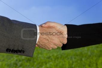 Green Handshake