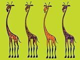 cute giraffe