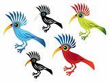 color parrot